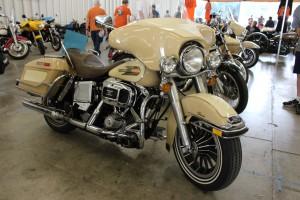 Gorgeous Harley
