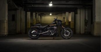 Harley-Davidson Adds Two Models